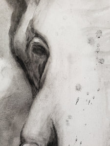 Elephant charcoal painting by Renee Fukumoto detail left eye