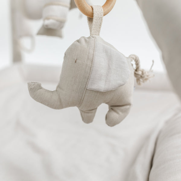 Organic Ellie the Elephant - Assorted Colours