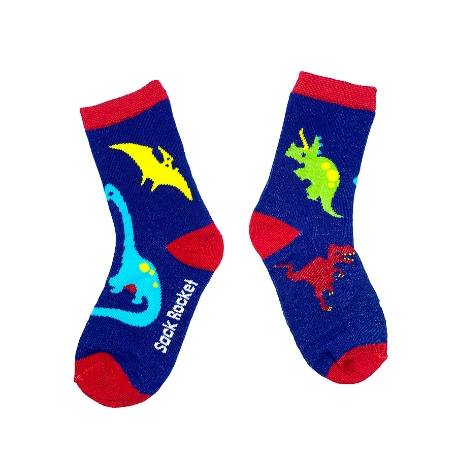 Kids Dinosaur Socks