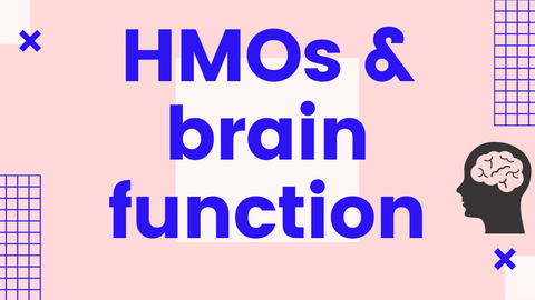 """blue and pink graphic with text """"HMOs & brain function"""""""