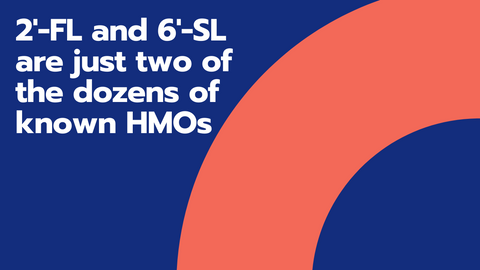 Blue graphic with orange arch discussing HMOs
