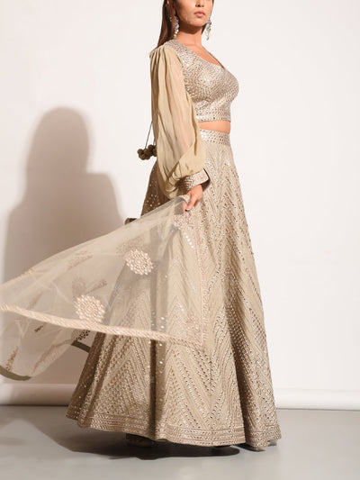 Mud Grey Embellished Silk Lehenga Set