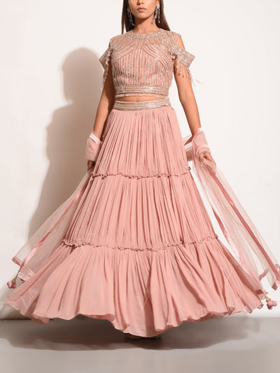 Rose Pink Embellished Pleated Lehenga Set