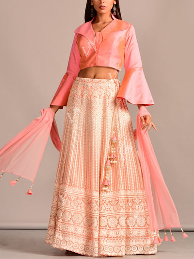 Lehenga, Lehenga Set, Crop Top, Lucknowi, Chikankari, Lehengas, Traditional Wear, Designer Wear, Party Wear