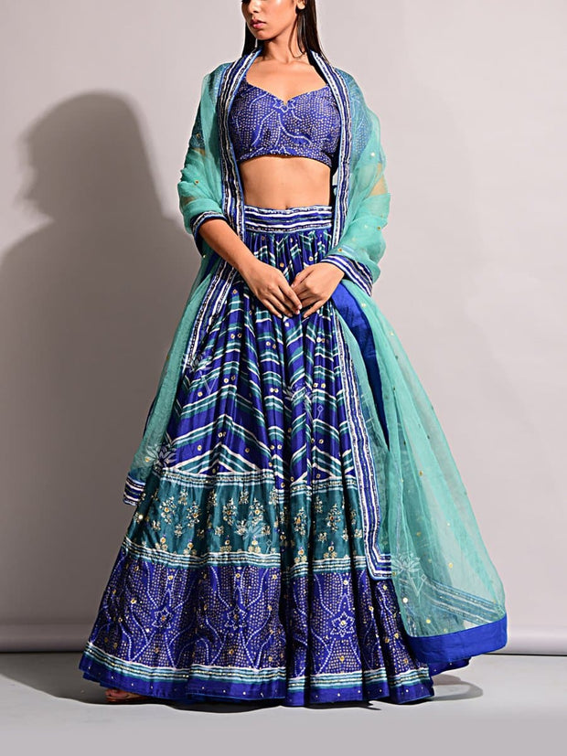 Lehenga, Printed, Lehenga set, Choli, Navratri lehenga, Zari work, Sequence work, Party wear, Designer wear, Leheriya