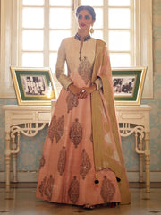 Shaded Beige Gown - 2016