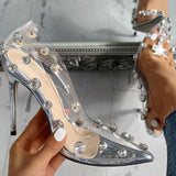Luna Pointed Pumps | Clear