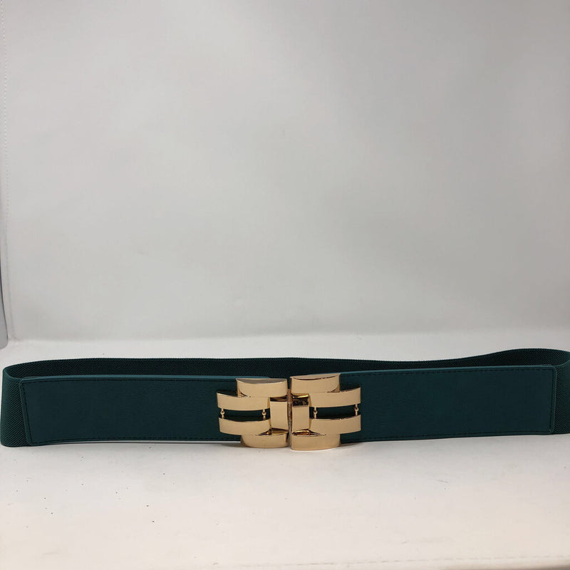 NWT  stretch belt