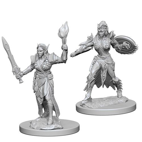 Dungeons & Dragons Nolzur`s Marvelous Unpainted Miniatures: W1 Female Elf Fighter | ProSoul Games