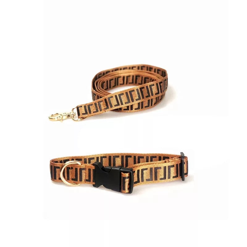 Fendi pup collar