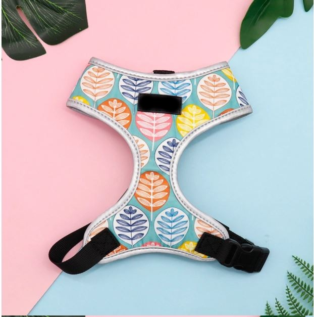 Sunkissed Harness