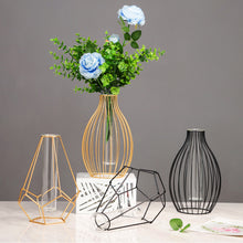 Load image into Gallery viewer, Geometric Metal Wrought Iron Frame Test Tube Bud Vase