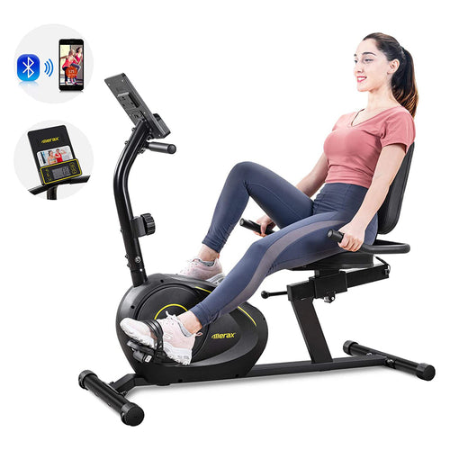 Merax Magnetic Recumbent Bike Exercise Bike Fitness Stationary Bicycle - Targen