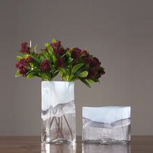 Load image into Gallery viewer, Modern Translucent Creative Glass Vase Flower Arrangement Decor - Targen
