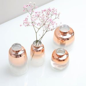 Rose Gold Gradient Glass Vase Dried Flowers Arrangement - Targen