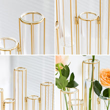 Load image into Gallery viewer, Targen Gold Frame Test Tube Glasses Cylinder Vase
