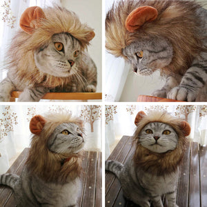 Cute Pet Cat Costume Lion Mane Wig Cap Hat  Clothes - Targen