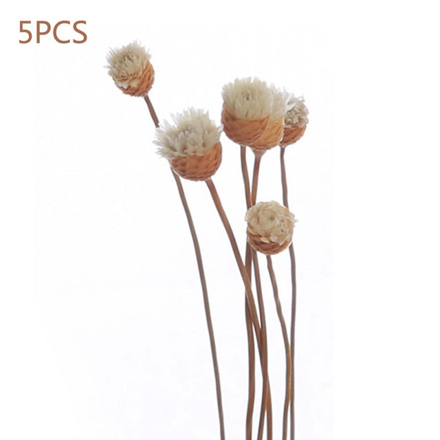 Daisy Flower Rattan Reeds Fragrance Diffuser Non-fire Replacement Refill Sticks 5pcs - Targen