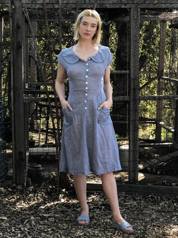 My Blue Plaid Country Picnic Dress