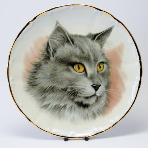 Decorative Cat Plate gold eyed grey