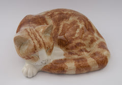 cat ginger sleeping mike hinton winstanley
