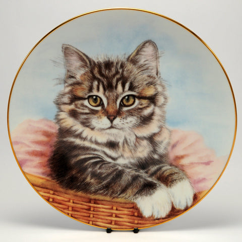 Decorative Cat Plate, Hamilton Collection  Sue Ranford, Bright eyes