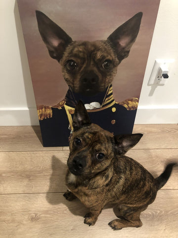 Image of The Admiral - Custom Pet Canvas - TOYSHIP