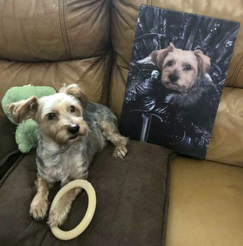 Image of The King in The North - Custom Pet Canvas - TOYSHIP
