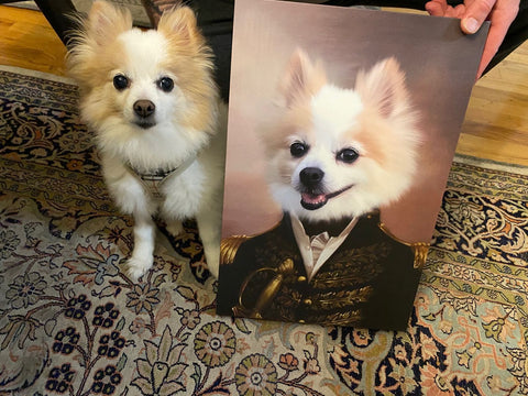 Image of The General - Custom Pet Canvas - TOYSHIP