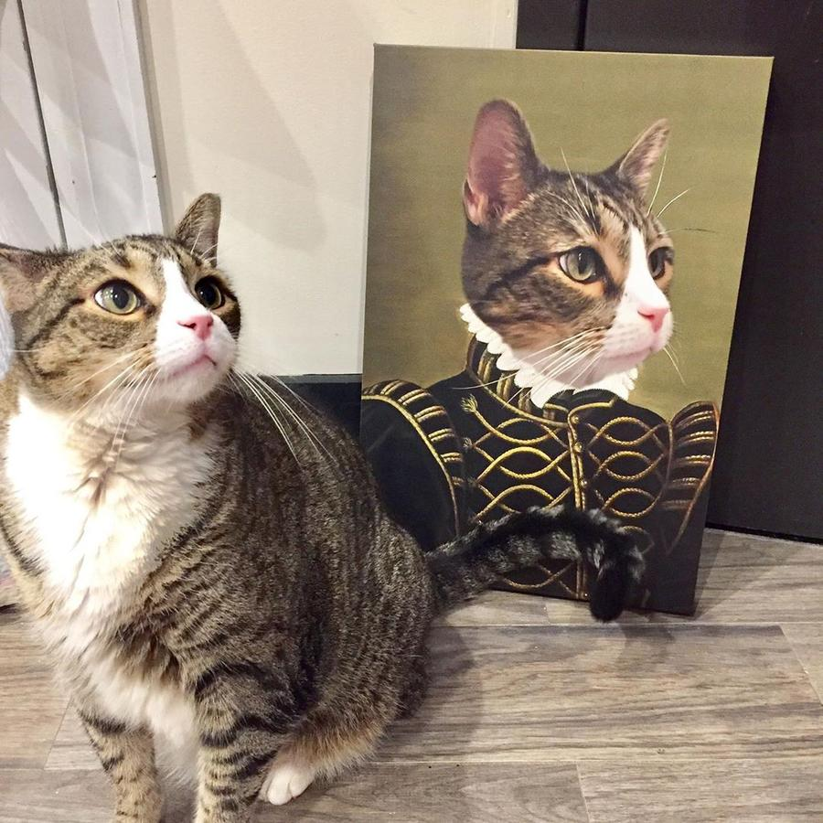 The Nobel - Custom Pet Canvas - TOYSHIP