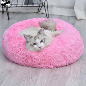 Comfy Pet cushion Bed