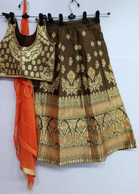 Brown banarasi lehenga choli
