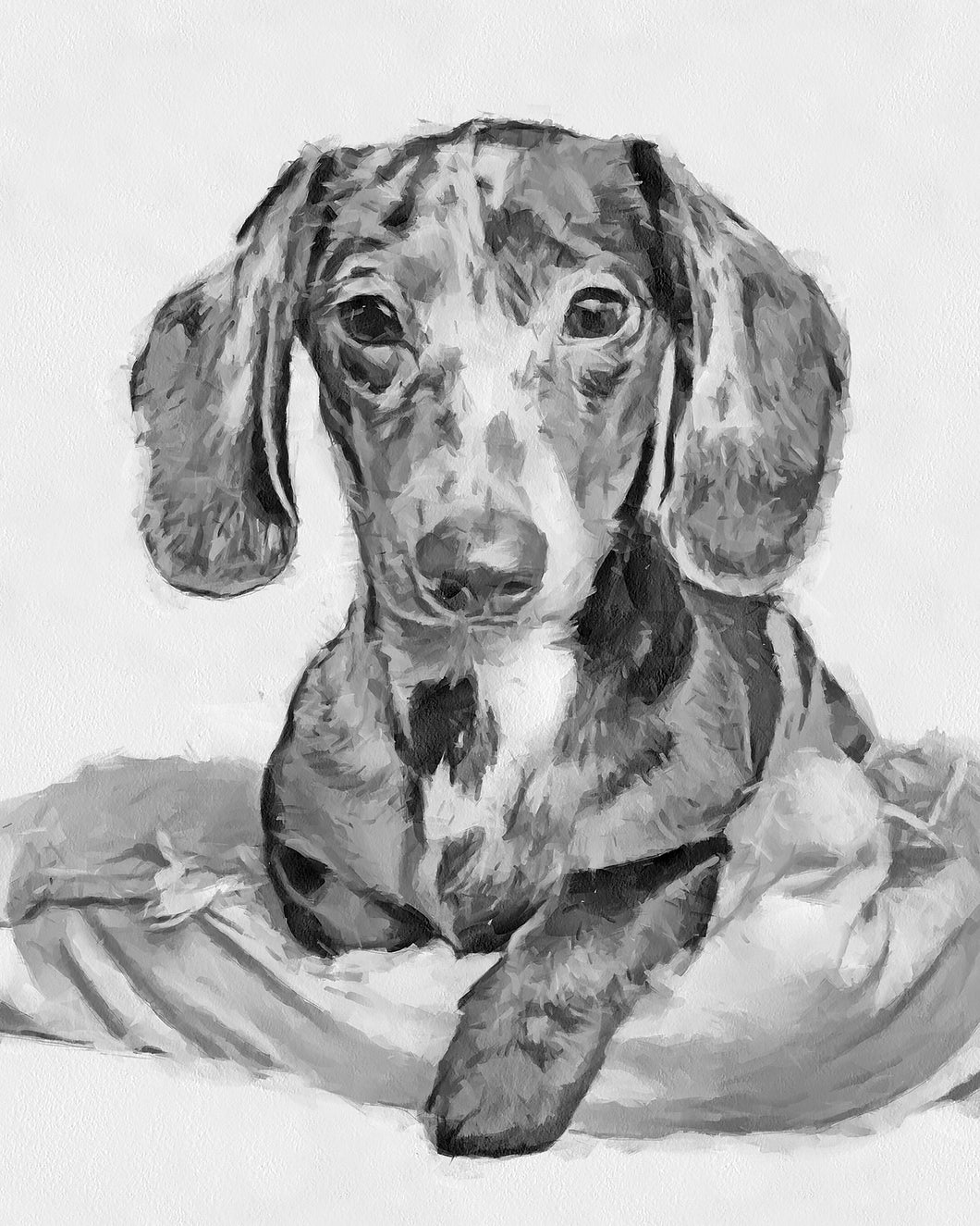 Watercolor Pet Portrait from Photos