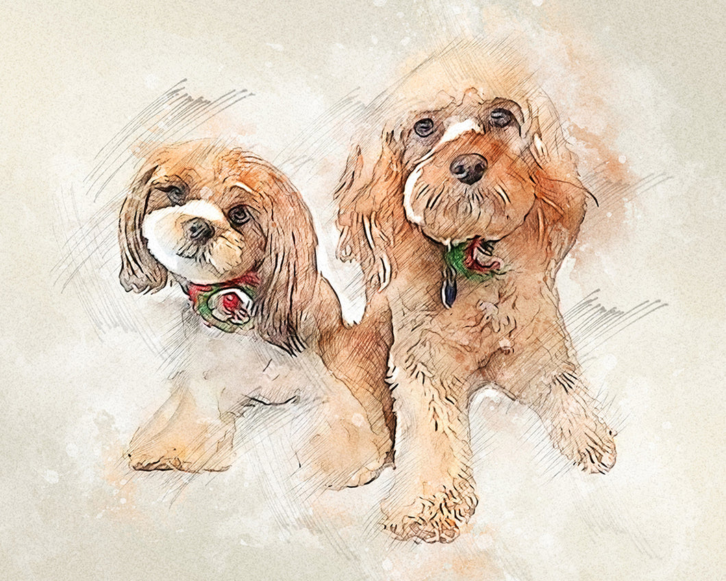 Drawing pet portrait from photos