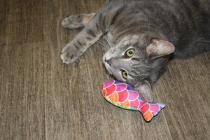 Fishie catnip cat toy