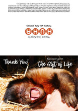 Load image into Gallery viewer, $30 Gift of Life card - ex-circus monkey