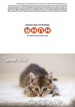 Load image into Gallery viewer, $40 Gift of Life card - rescue kitten vaccination & de-worming