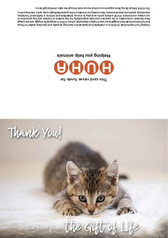 $40 Gift of Life card - rescue kitten vaccination & de-worming