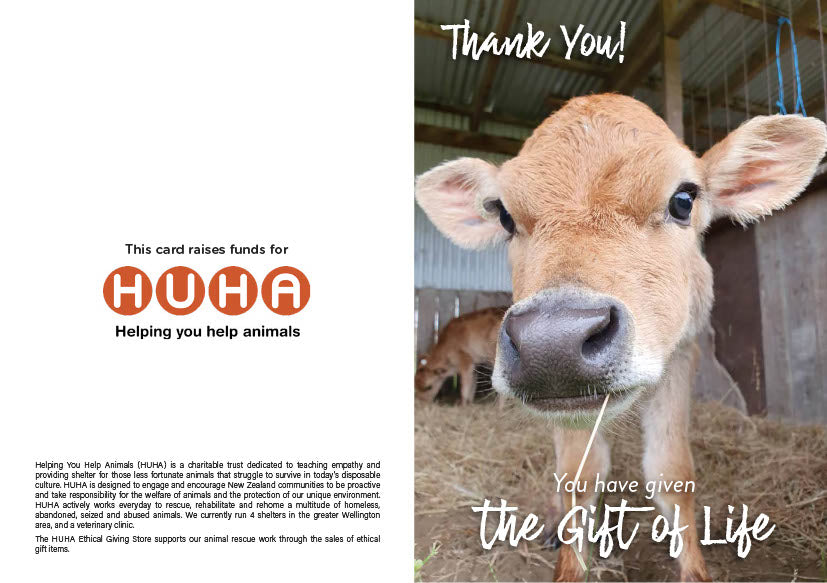 $100 Gift of Life card - bobby calf