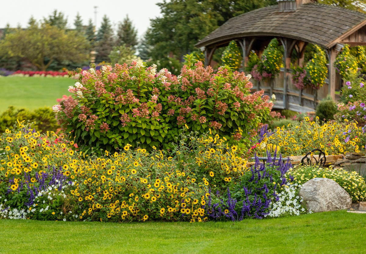The First 3 Things To Consider When Planning a Garden