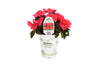 Proven Winners® Annual Plants|Impatiens - Compact Deep Rose 2