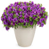 Proven Winners® Annual Plants|Calibrachoa - Superbells Double Blue 3