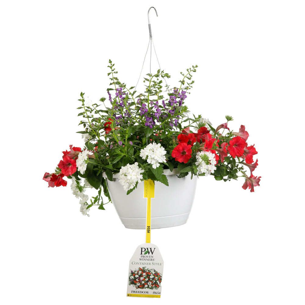 Proven Winners® Patio Plants|Freedom Combination Hanging Basket 1