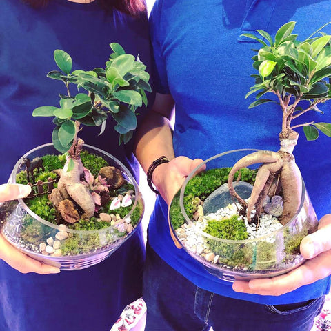 couple attending terrarium workshop at Lush Glass Door