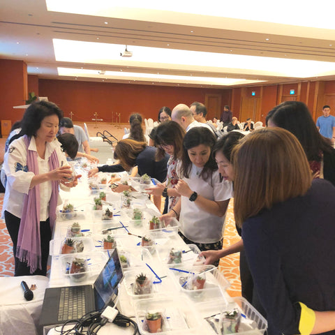 Lush Glass Door hosted a corporate terrarium workshop for Singapore General Hospital SGH annual staff retreat 1