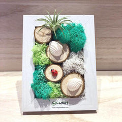 Corporate Airplant Moss Frame Workshop by Lush Glass Door