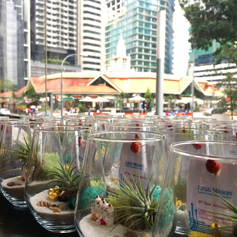 Corporate Gifts Customised Terrariums for Legg Mason Singapore