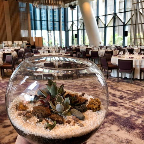 Succulent Terrarium Centerpiece by Lush Glass Door