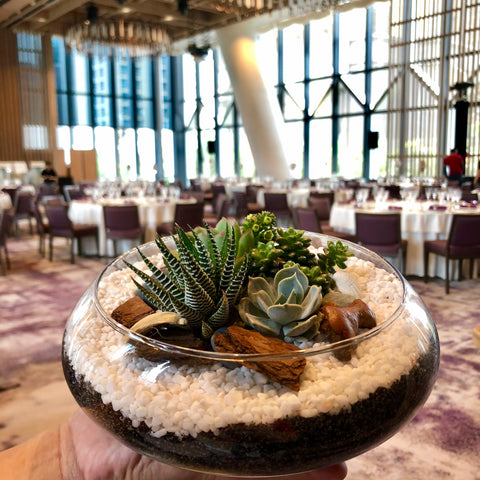 Rustic Succulent Terrarium Centerpiece by Lush Glass Door