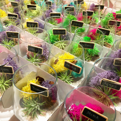 Stunning Modern Airplant Terrariums as Corporate Gifts for The Ritz Carlton